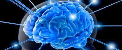 La-neurociencia